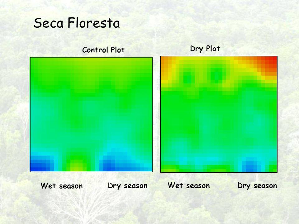 Seca Floresta Control Plot Dry Plot Wet season Dry seasonWet seasonDry season