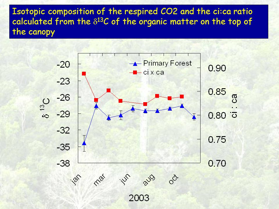 Isotopic composition of the respired CO2 and the ci:ca ratio calculated from the 13 C of the organic matter on the top of the canopy