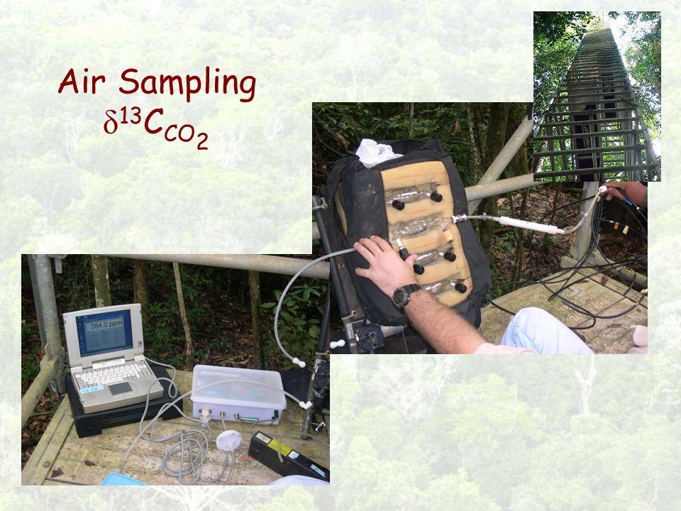 Air Sampling δ 13 C CO 2