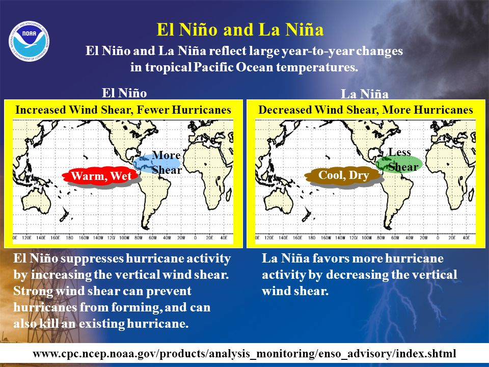 El Niño suppresses hurricane activity by increasing the vertical wind shear.