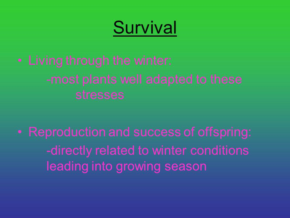 Survival Living through the winter: -most plants well adapted to these stresses Reproduction and success of offspring: -directly related to winter con