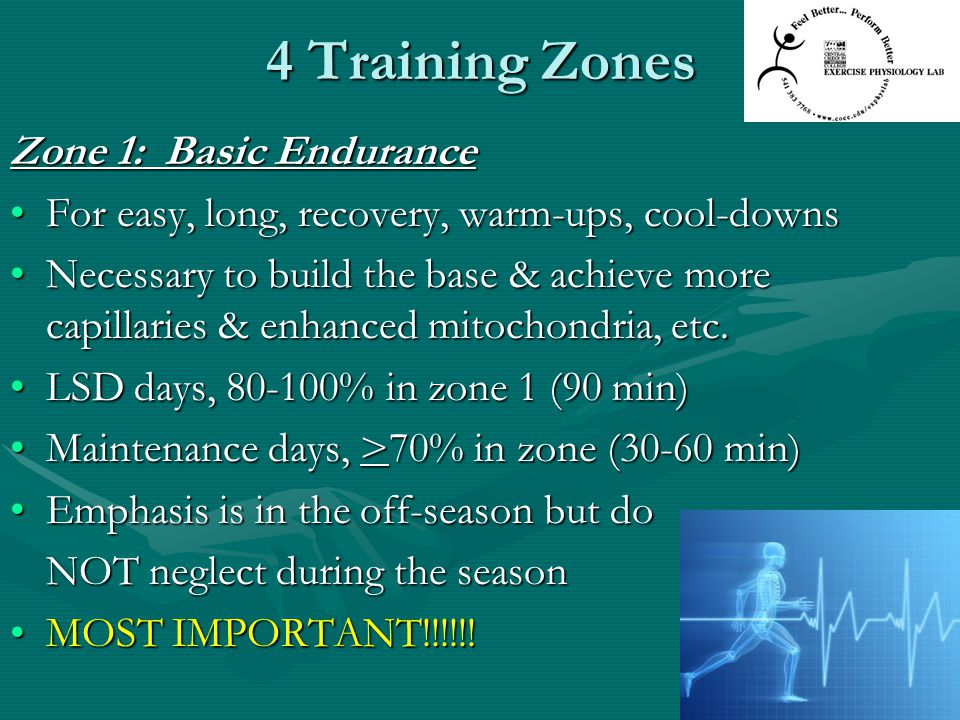4 Training Zones Zone 1: Basic Endurance For easy, long, recovery, warm-ups, cool-downsFor easy, long, recovery, warm-ups, cool-downs Necessary to bui