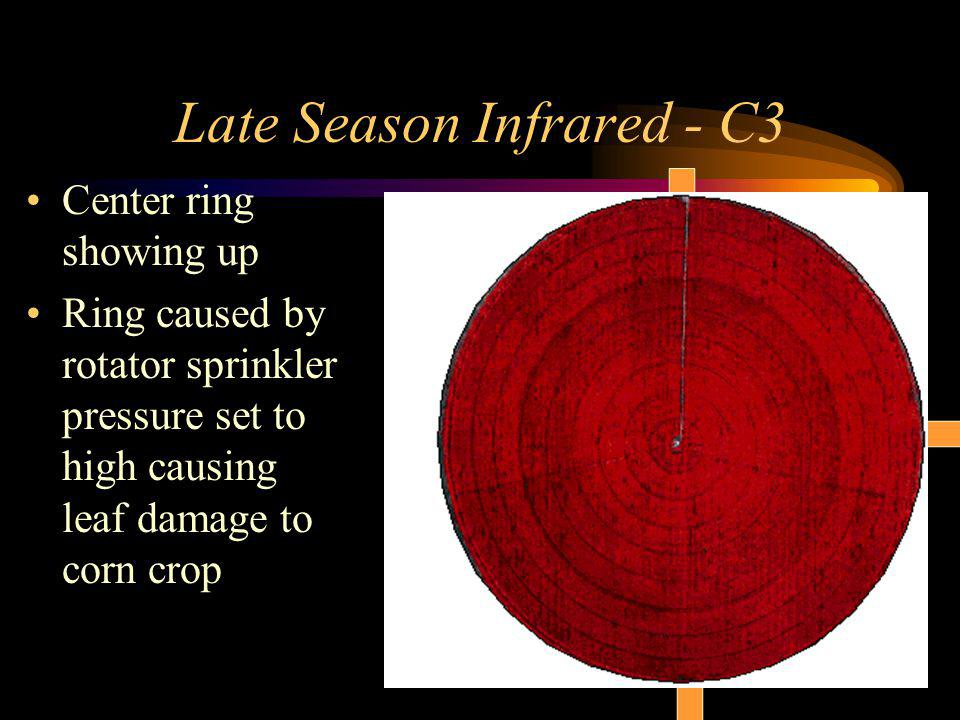 Late Season Infrared - C3 Center ring showing up Ring caused by rotator sprinkler pressure set to high causing leaf damage to corn crop