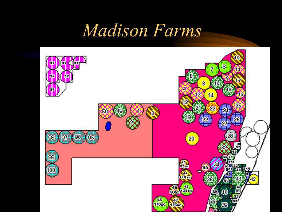 Madison Farms