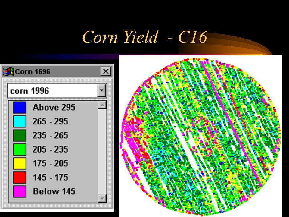 Corn Yield - C16
