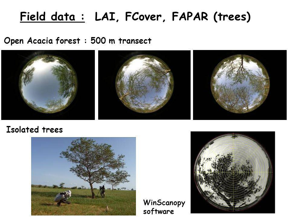 Field data : LAI, FCover, FAPAR (trees) Isolated trees Open Acacia forest : 500 m transect WinScanopy software
