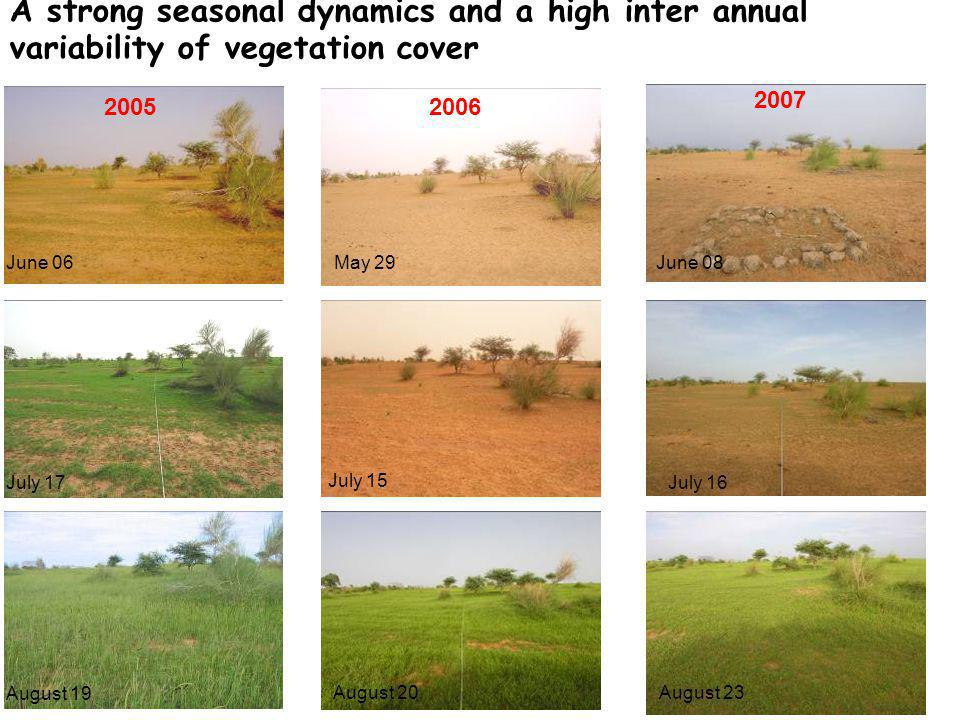 July 15 May 29June 06 July 17 2005 August 20 August 19 A strong seasonal dynamics and a high inter annual variability of vegetation cover 2006 2007 July 16 June 08 August 23