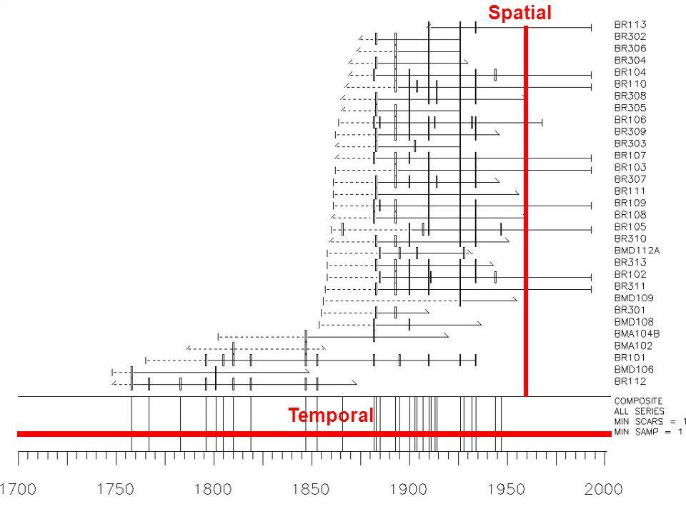 Temporal Spatial