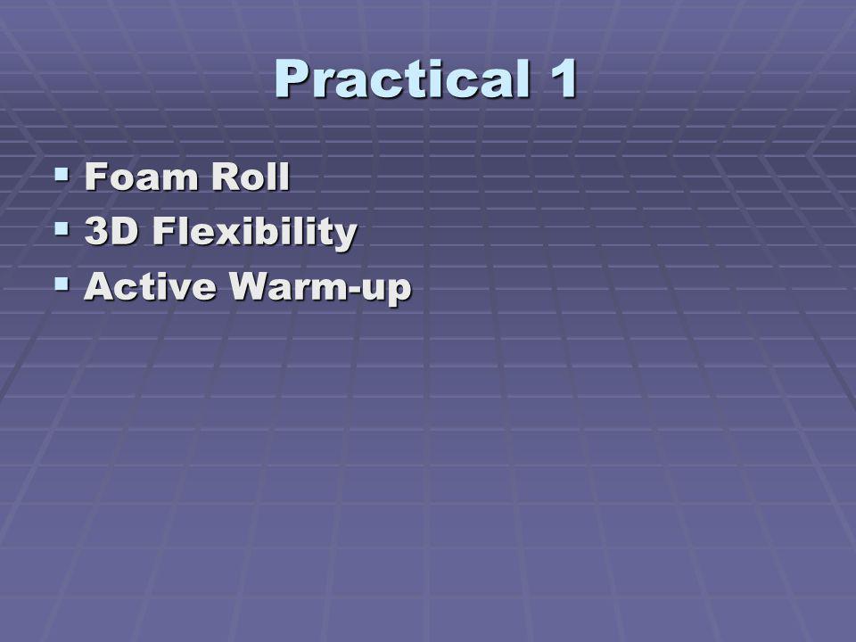Practical 1 Foam Roll Foam Roll 3D Flexibility 3D Flexibility Active Warm-up Active Warm-up