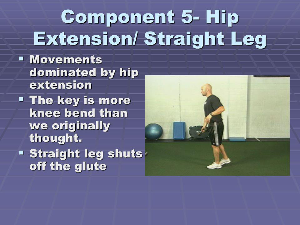 Component 5- Hip Extension/ Straight Leg Movements dominated by hip extension Movements dominated by hip extension The key is more knee bend than we o