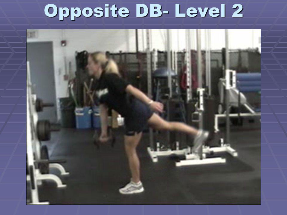 Opposite DB- Level 2