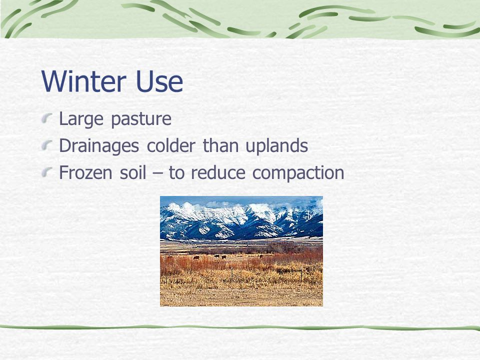 Winter Use Large pasture Drainages colder than uplands Frozen soil – to reduce compaction