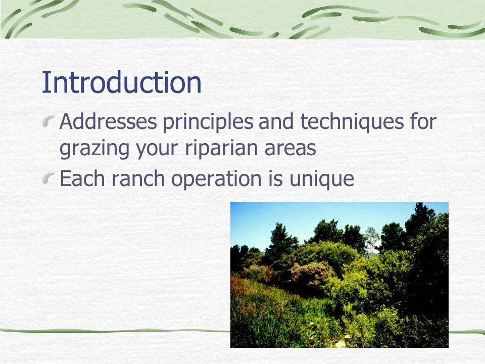 Introduction Addresses principles and techniques for grazing your riparian areas Each ranch operation is unique