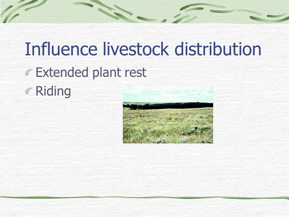 Influence livestock distribution Extended plant rest Riding