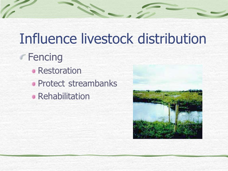 Influence livestock distribution Fencing Restoration Protect streambanks Rehabilitation