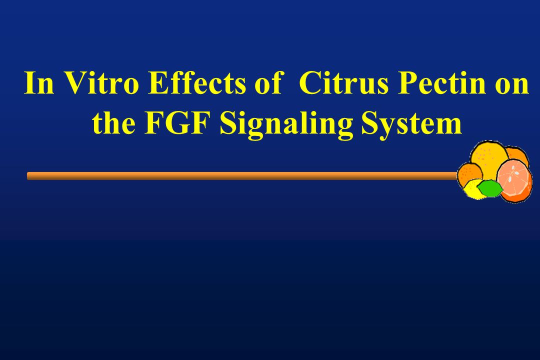 In Vitro Effects of Citrus Pectin on the FGF Signaling System