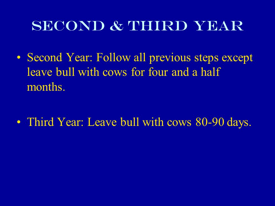 Second & Third Year Second Year: Follow all previous steps except leave bull with cows for four and a half months.