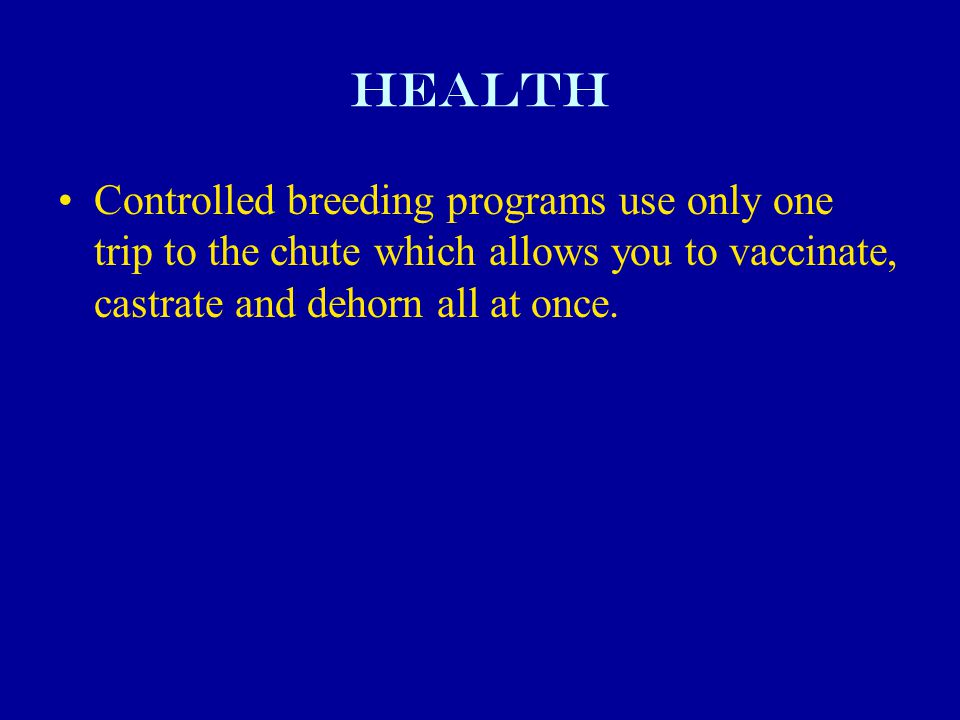 Health Controlled breeding programs use only one trip to the chute which allows you to vaccinate, castrate and dehorn all at once.