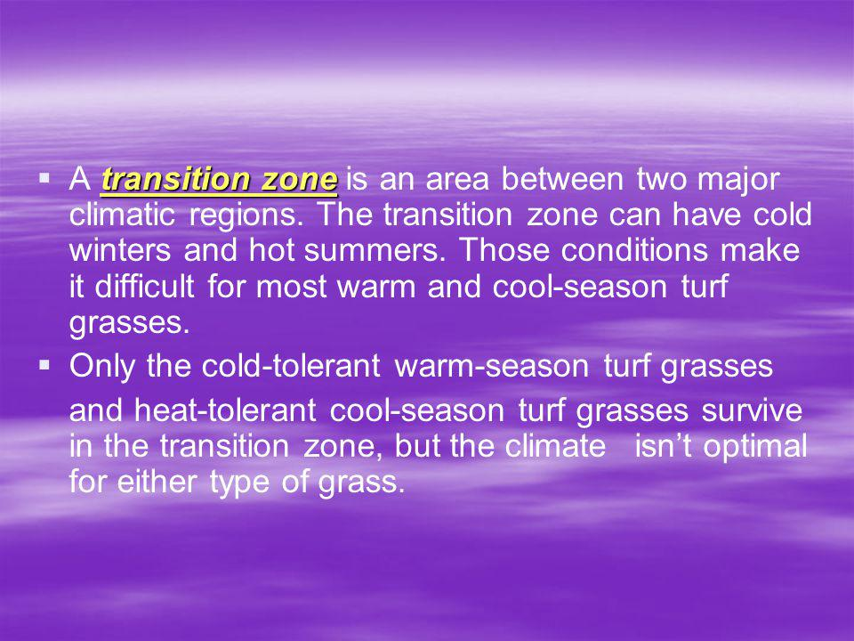 transition zone A transition zone is an area between two major climatic regions.