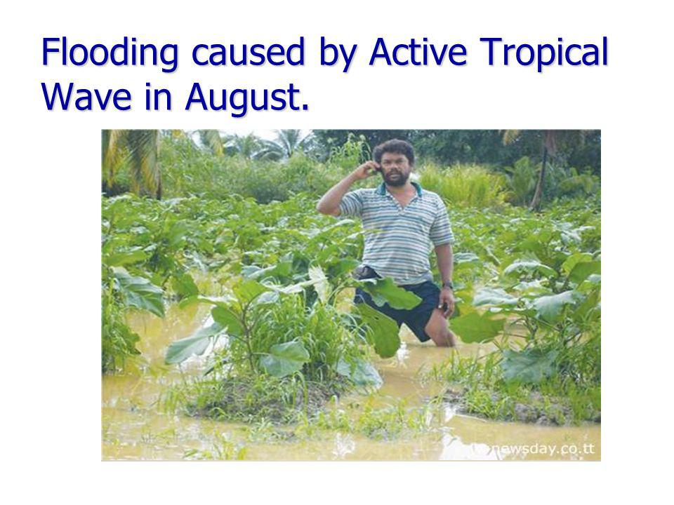 Flooding caused by Active Tropical Wave in August.