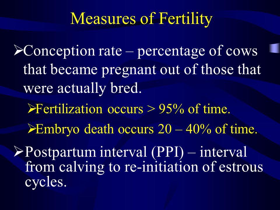 Day of Calving Season Percentage of Calves Born Measures of Fertility Start of Breeding Calving Distribution