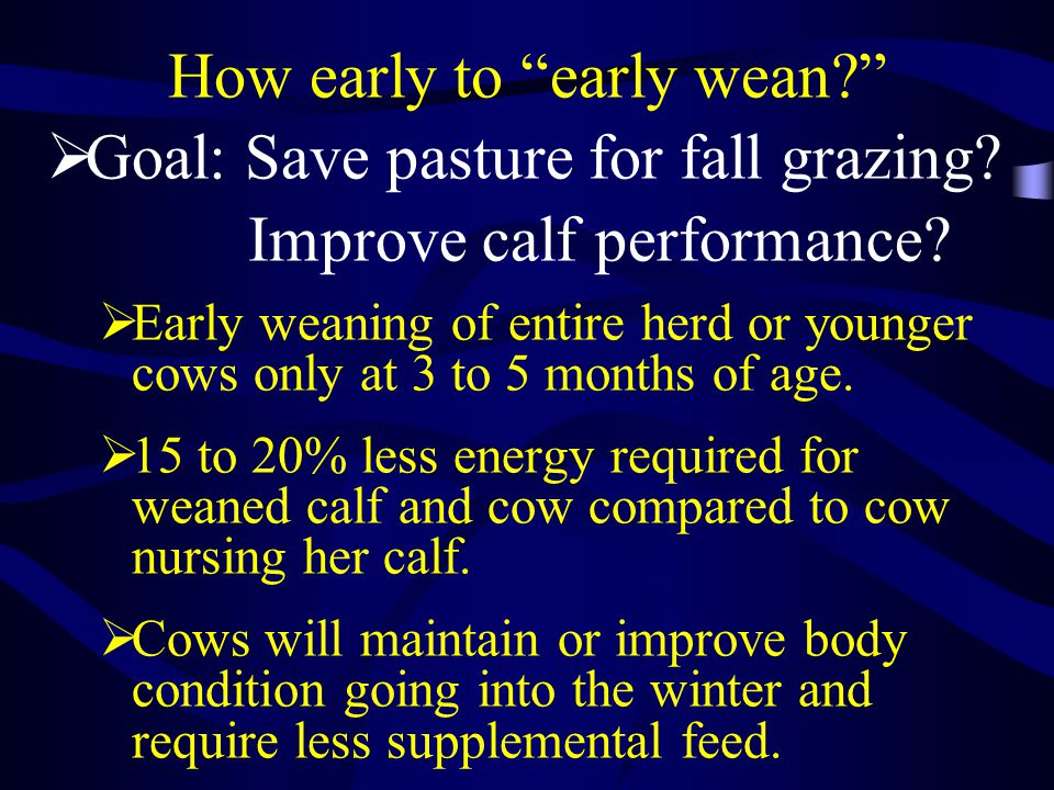 Early Weaning during Drought Feasible for your Operation.