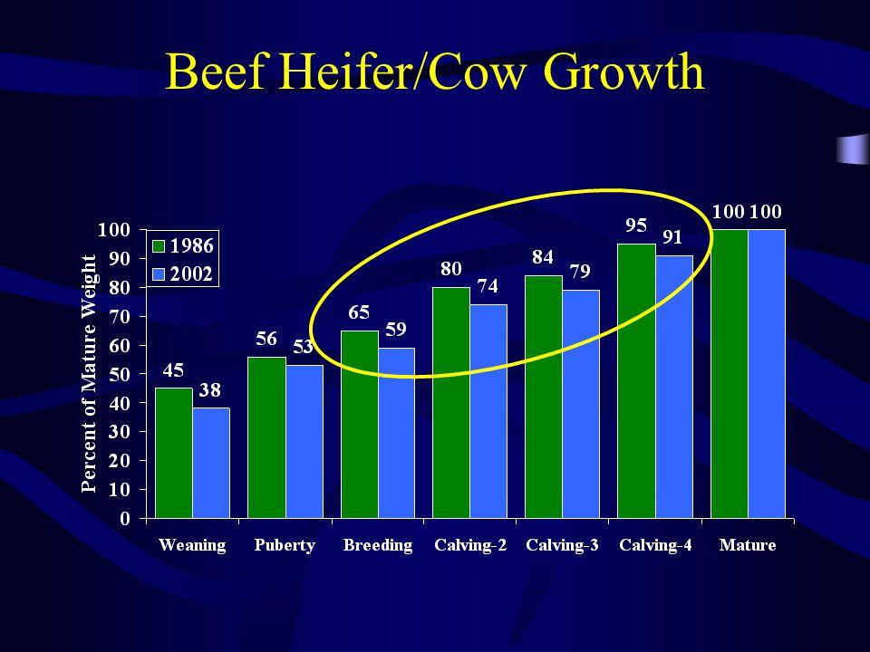 % of Mature Wt @ breeding Item 55%65% Pre-breeding wt600683 Conception (21d) 30 62 Calving wt.834897 Calf birth wt.
