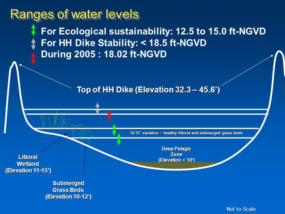 Ranges of water levels For Ecological sustainability: 12.5 to 15.0 ft-NGVD For HH Dike Stability: < 18.5 ft-NGVD During 2005 : 18.02 ft-NGVD Deep Pelagic Zone (Elevation < 10) LittoralWetland (Elevation 11-15) Submerged Grass Beds (Elevation 10-12) 12-15 variation = healthy littoral and submerged grass beds Top of HH Dike (Elevation 32.3 – 45.6) Not to Scale
