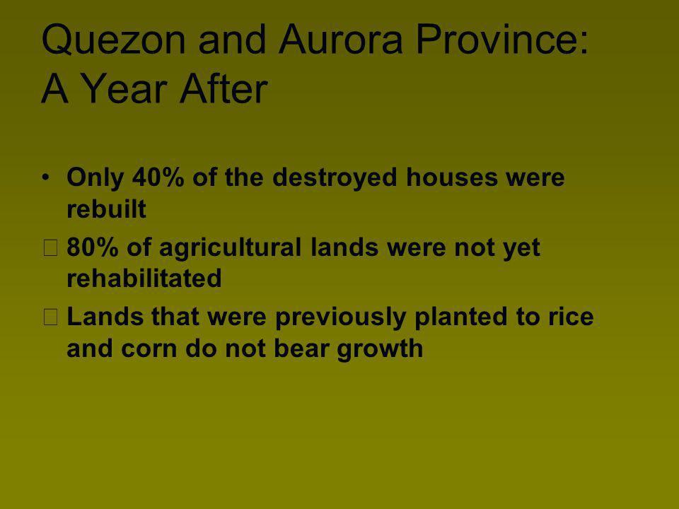 Quezon and Aurora Province: A Year After Only 40% of the destroyed houses were rebuilt 80% of agricultural lands were not yet rehabilitated Lands that were previously planted to rice and corn do not bear growth