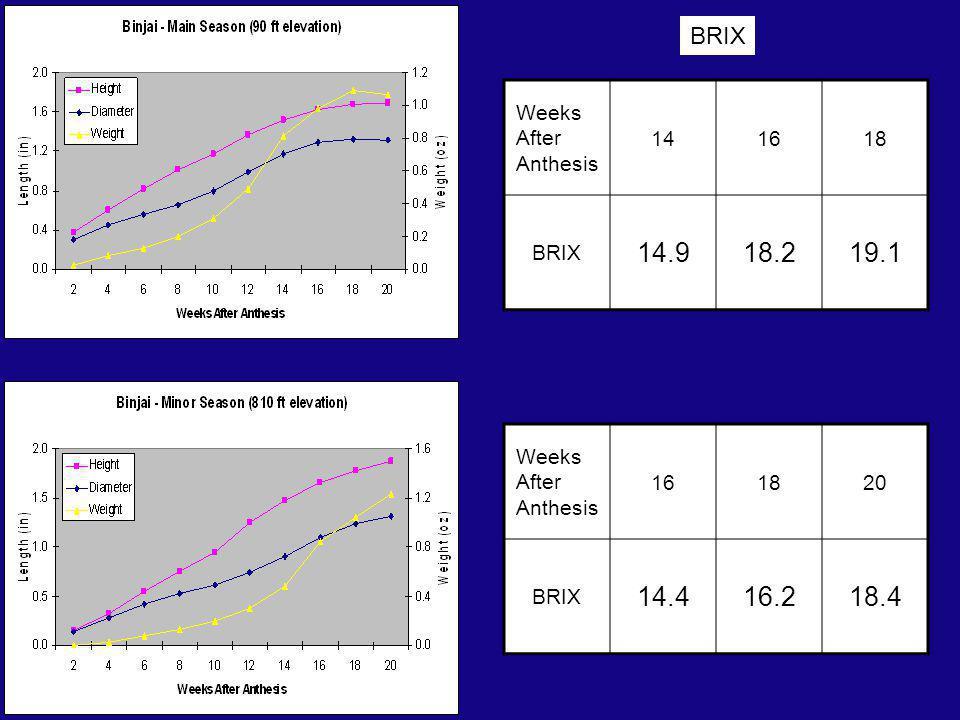 Weeks After Anthesis 141618 BRIX 14.918.219.1 Weeks After Anthesis 161820 BRIX 14.416.218.4 BRIX