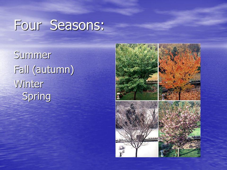 Four Seasons: Summer Fall (autumn) Winter Spring