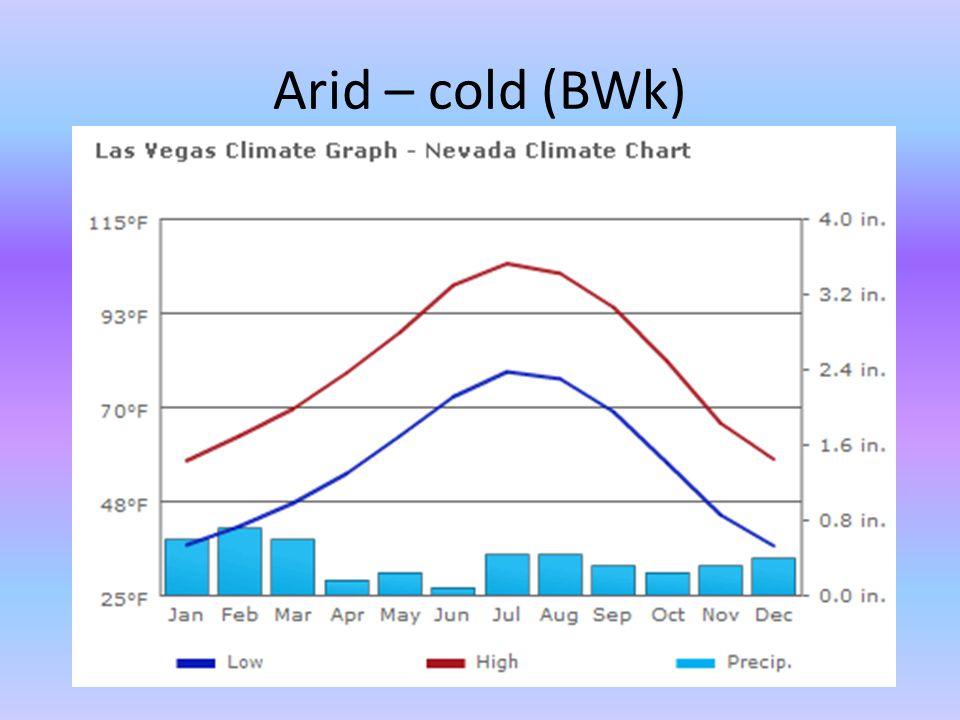 Arid – cold (BWk)
