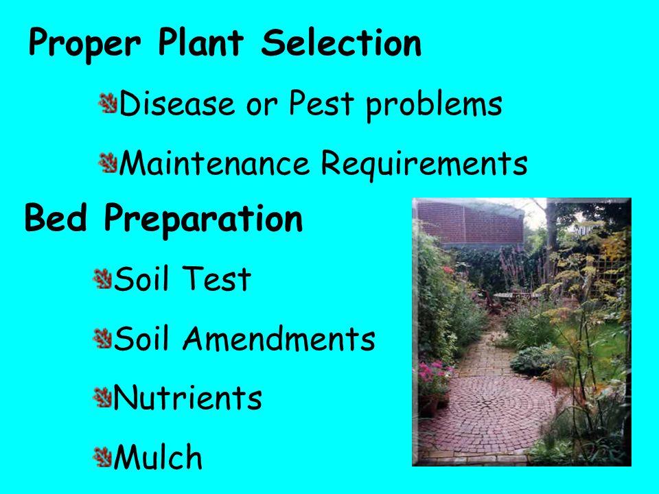 Proper Plant Selection Disease or Pest problems Maintenance Requirements Bed Preparation Soil Test Soil Amendments Nutrients Mulch