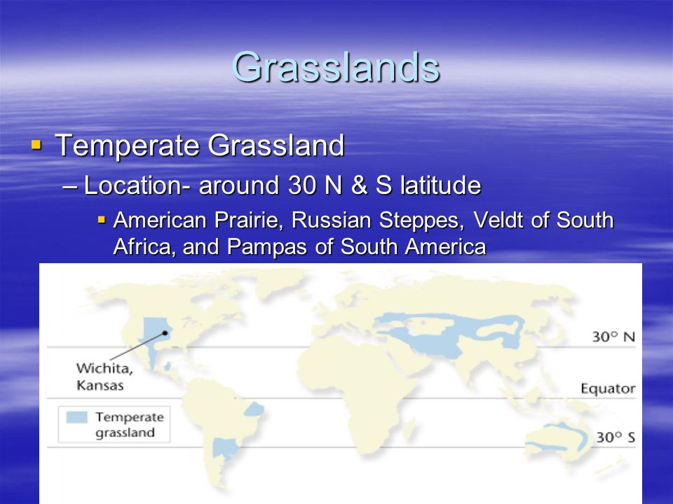 Grasslands Temperate Grassland Temperate Grassland –Location- around 30 N & S latitude American Prairie, Russian Steppes, Veldt of South Africa, and P