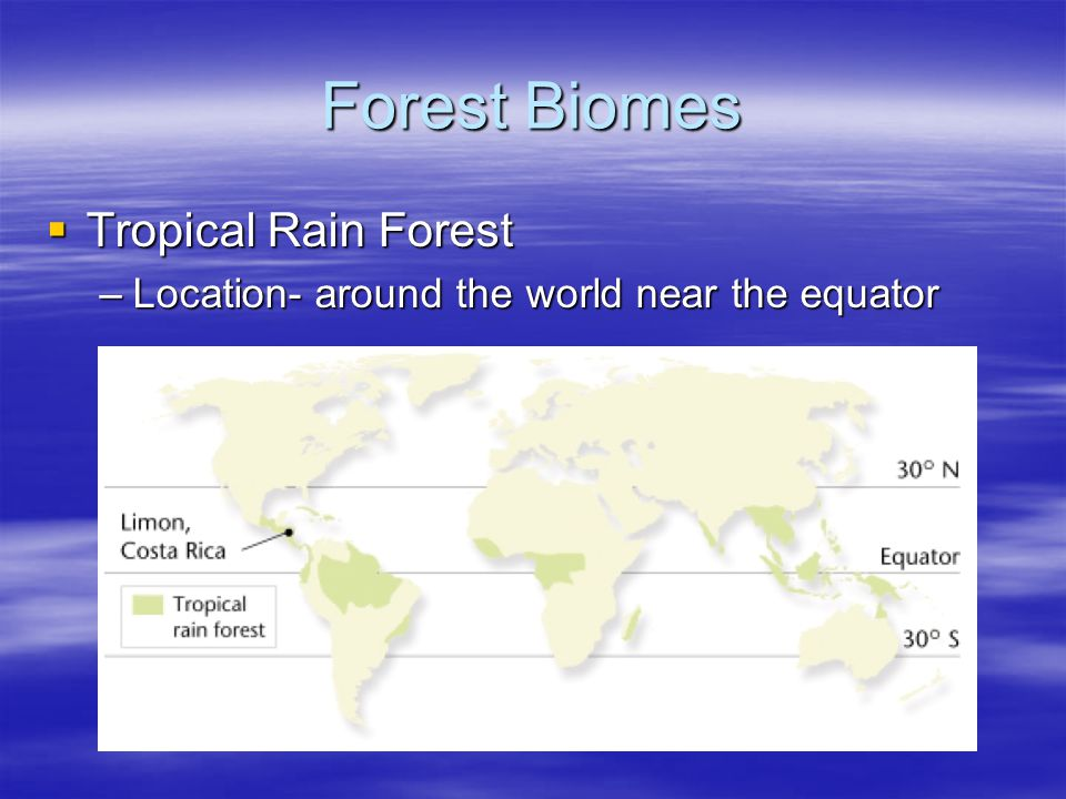 Forest Biomes Tropical Rainforest Tropical Rainforest –Precipitation- 200-450 cm per year –Temperature- very warm –Growing season- 12 months –Soil- Poor quality Leeching washes away nutrients Leeching washes away nutrients Plants adapted with buttresses to support the tall trees with shallow root systems.