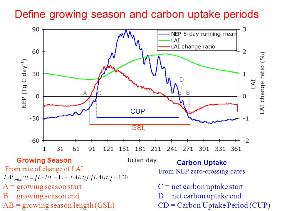 Define growing season and carbon uptake periods A B C D A = growing season start B = growing season end AB = growing season length (GSL) C = net carbon uptake start D = net carbon uptake end CD = Carbon Uptake Period (CUP) Growing Season From rate of change of LAI CUP GSL Carbon Uptake From NEP zero-crossing dates