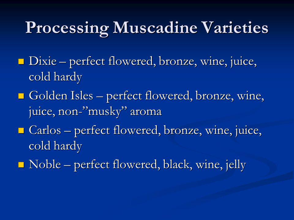 Processing Muscadine Varieties Dixie – perfect flowered, bronze, wine, juice, cold hardy Dixie – perfect flowered, bronze, wine, juice, cold hardy Gol