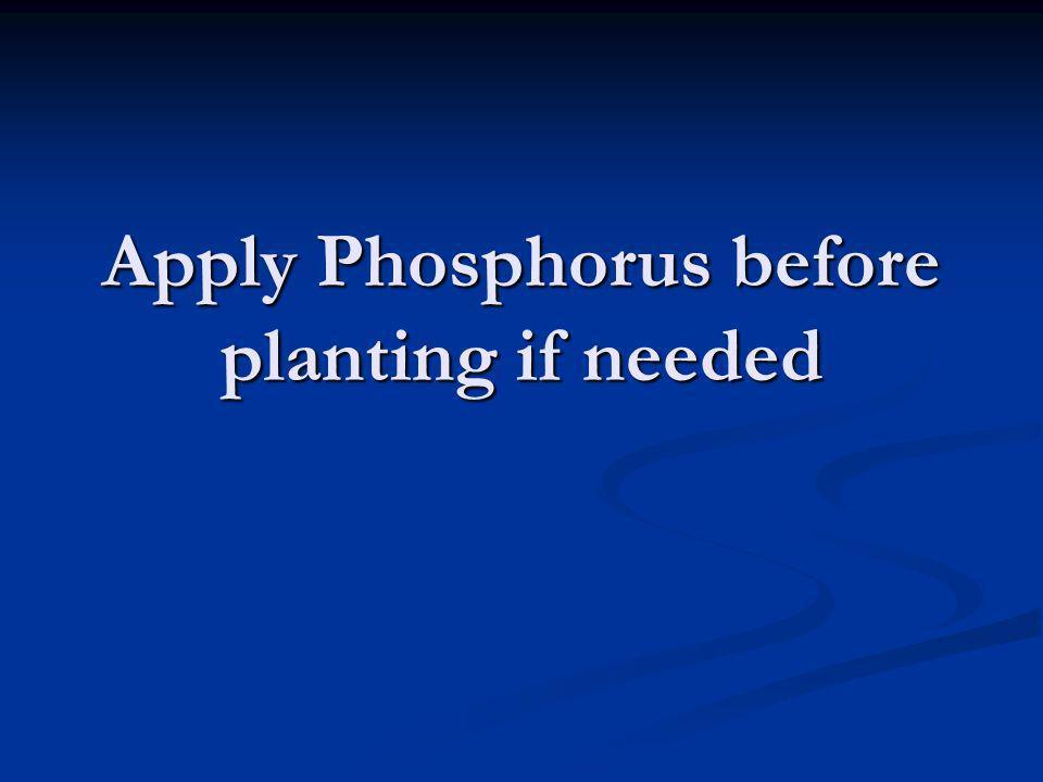 Apply Phosphorus before planting if needed