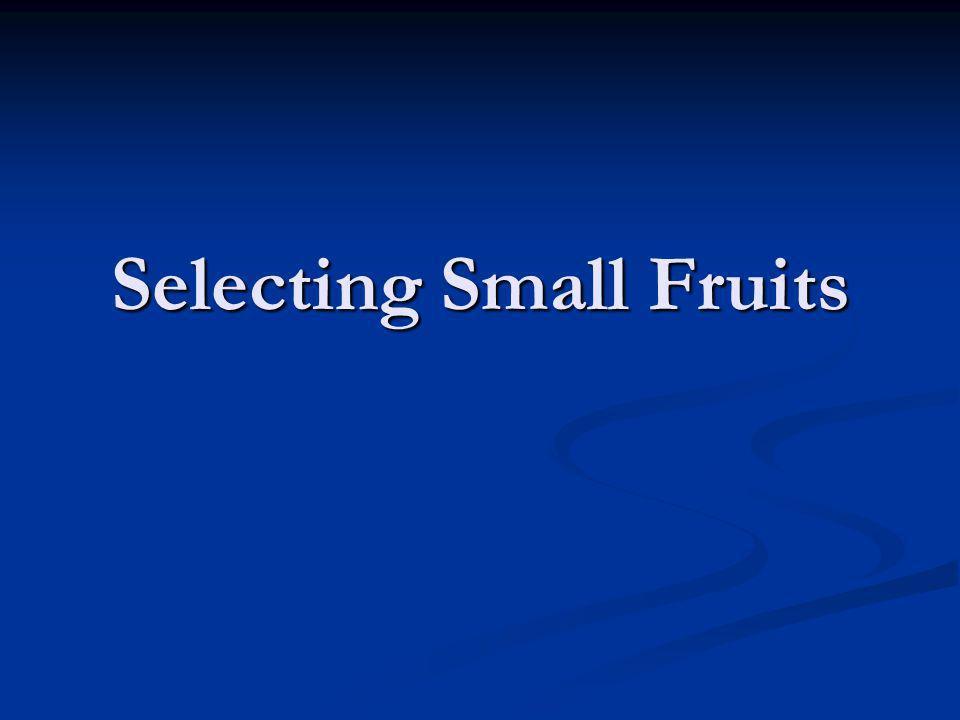 Selecting Small Fruits
