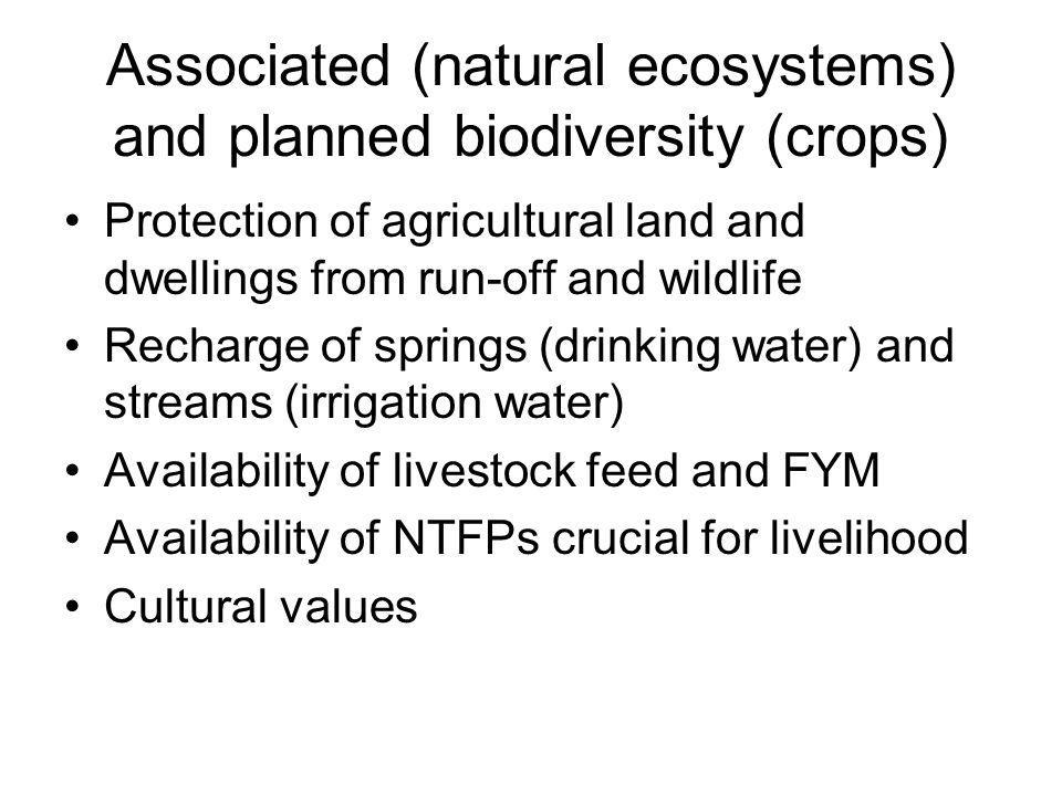 Associated (natural ecosystems) and planned biodiversity (crops) Protection of agricultural land and dwellings from run-off and wildlife Recharge of springs (drinking water) and streams (irrigation water) Availability of livestock feed and FYM Availability of NTFPs crucial for livelihood Cultural values