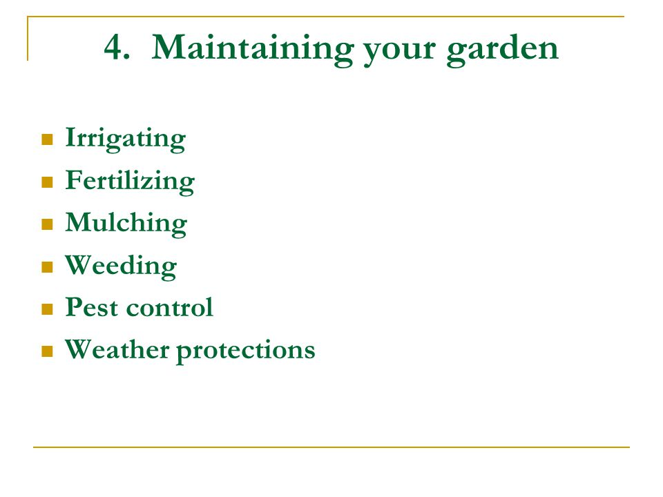 4. Maintaining your garden Irrigating Fertilizing Mulching Weeding Pest control Weather protections