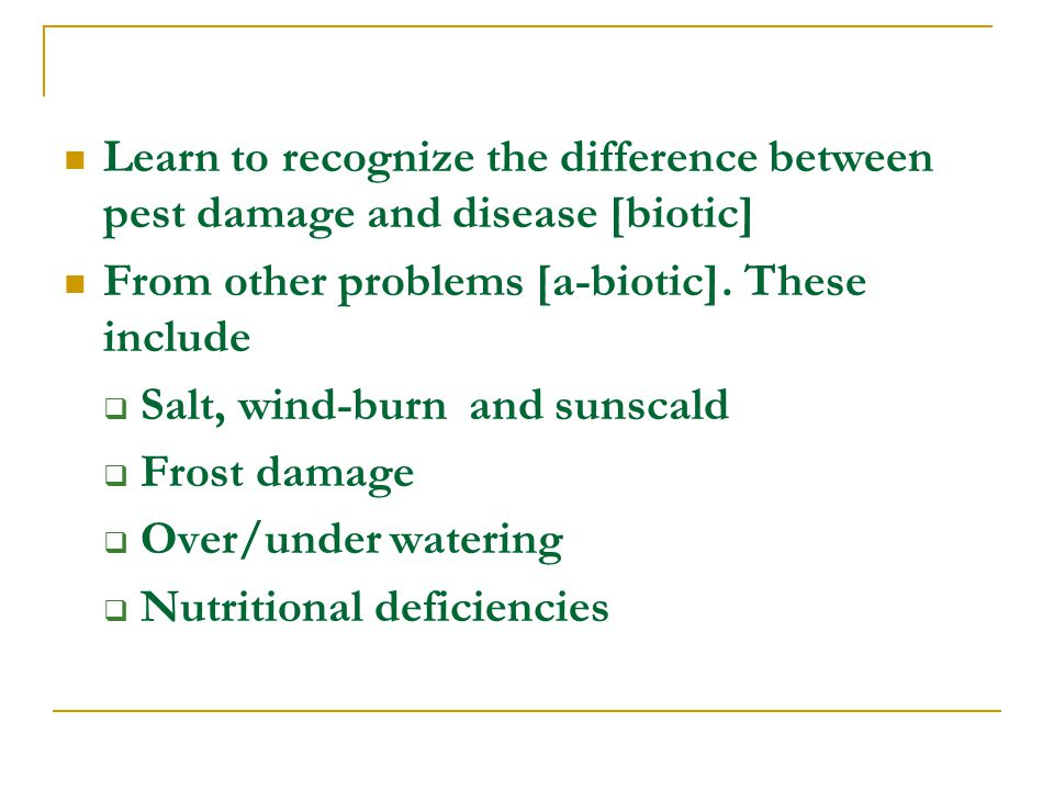 Learn to recognize the difference between pest damage and disease [biotic] From other problems [a-biotic].