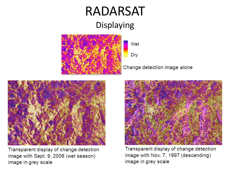 RADARSAT Displaying Wet Dry Change detection image alone Transparent display of change detection image with Sept. 9, 2006 (wet season) image in grey s