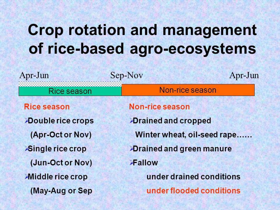 Crop rotation and management of rice-based agro-ecosystems Rice season Non-rice season Apr-Jun Sep-Nov Non-rice season Drained and cropped Winter wheat, oil-seed rape…… Drained and green manure Fallow under drained conditions under flooded conditions Rice season Double rice crops (Apr-Oct or Nov) Single rice crop (Jun-Oct or Nov) Middle rice crop (May-Aug or Sep
