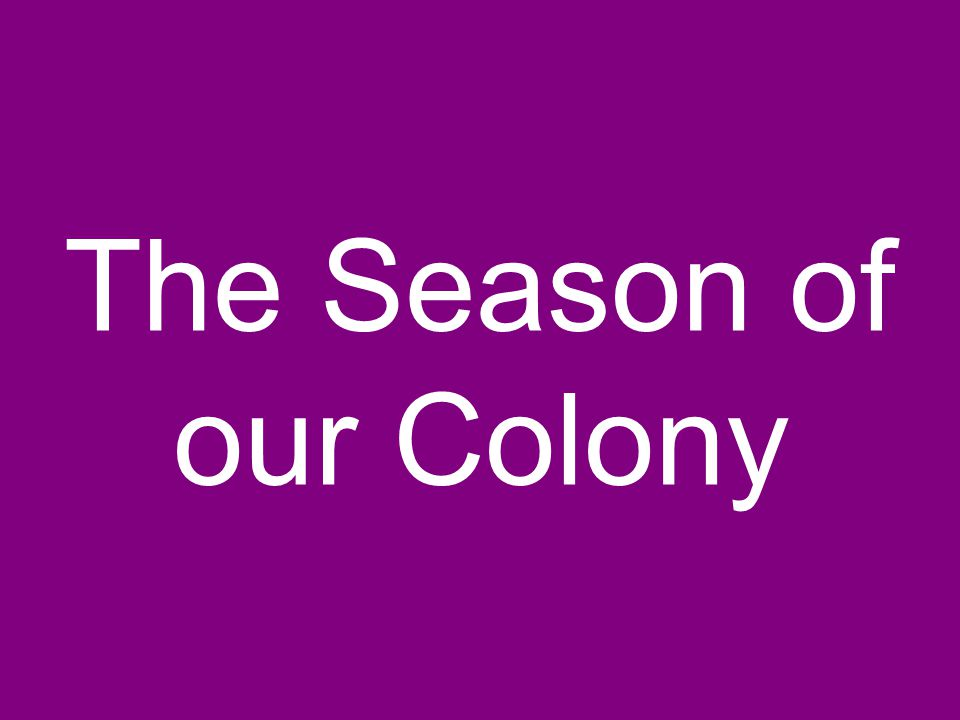 The Season of our Colony