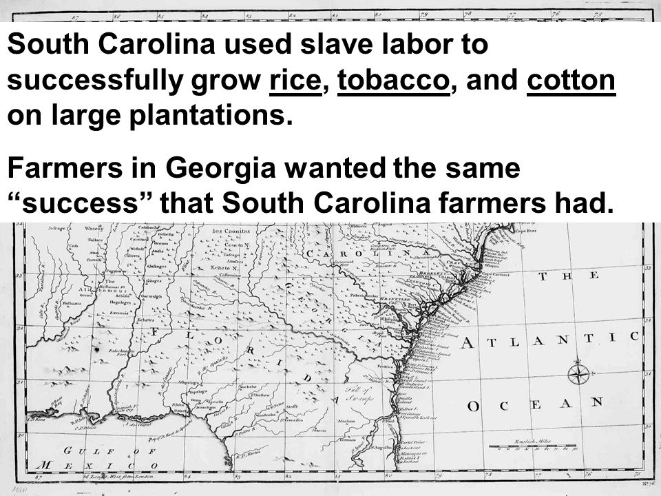 South Carolina used slave labor to successfully grow rice, tobacco, and cotton on large plantations. Farmers in Georgia wanted the same success that S