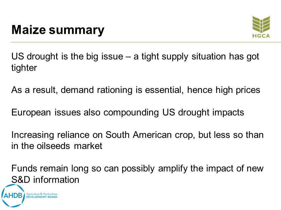 Maize summary US drought is the big issue – a tight supply situation has got tighter As a result, demand rationing is essential, hence high prices European issues also compounding US drought impacts Increasing reliance on South American crop, but less so than in the oilseeds market Funds remain long so can possibly amplify the impact of new S&D information