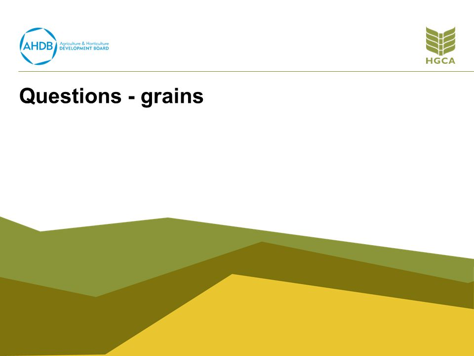 Questions - grains