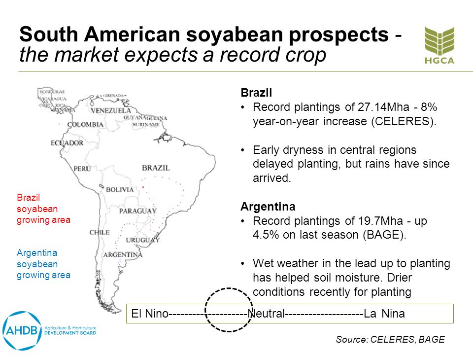 South American soyabean prospects - the market expects a record crop Brazil Record plantings of 27.14Mha - 8% year-on-year increase (CELERES).