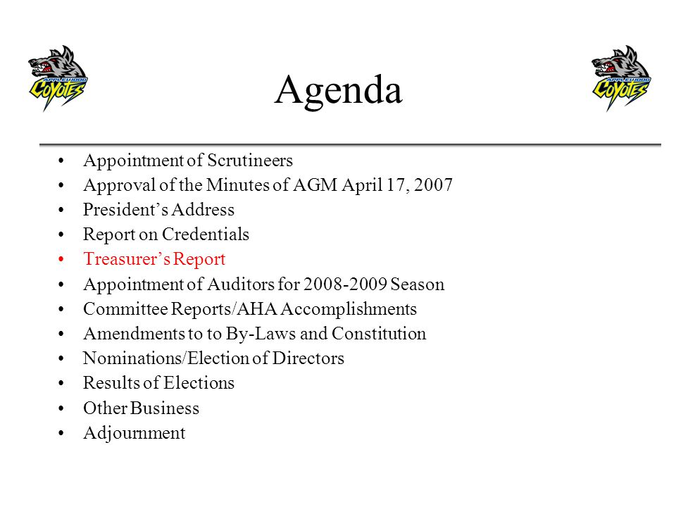 Agenda Appointment of Scrutineers Approval of the Minutes of AGM April 17, 2007 Presidents Address Report on Credentials Treasurers Report Appointment of Auditors for 2008-2009 Season Committee Reports/AHA Accomplishments Amendments to to By-Laws and Constitution Nominations/Election of Directors Results of Elections Other Business Adjournment